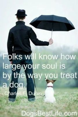 33ea8e2f8d588c7833d37119b7de3a50--animal-lover-quotes-dog-quotes-love